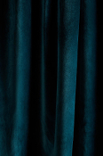 Green Dragonfly Velvet Drapes with Lining